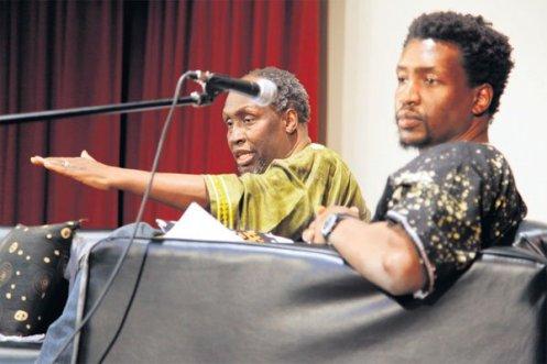 Mwandishi wa Riwaya